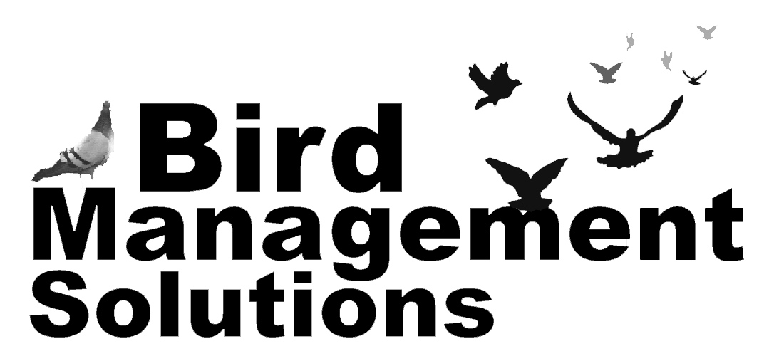 Bird Management Solutions